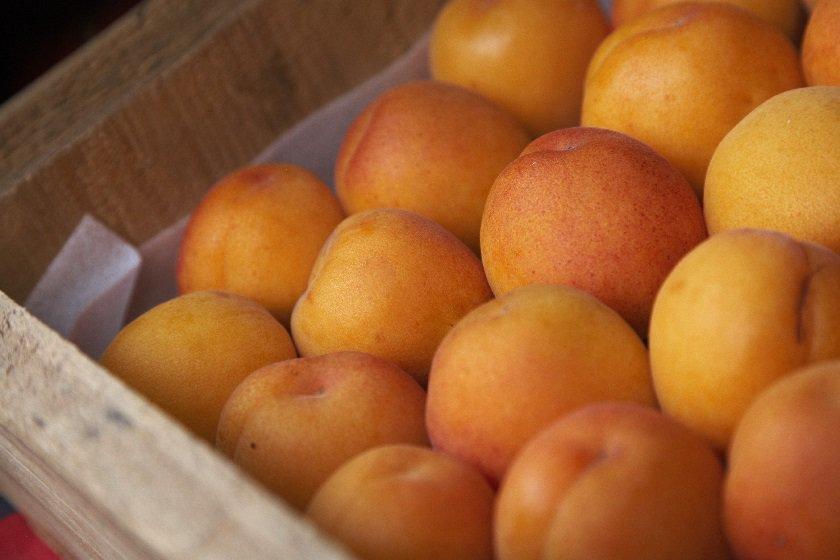 Hawkes Bay - Apricots